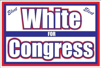 Custom Yard Sign for Congressional Campaign