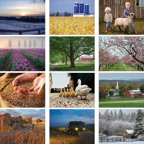 Monthly Scenes of American Agriculture 2020 Wall Calendar
