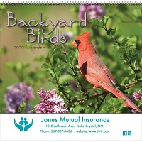 Backyard Birds 2020 Calendar Cover