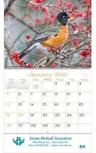 Backyard Birds 2020 Wall Calendars