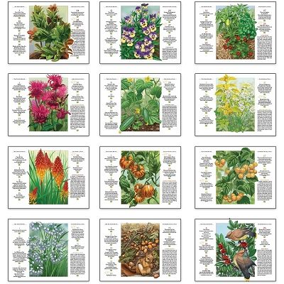 Monthly Scenes of Old Farmers Almanac Gardening 2021 Calendar