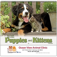 Cover of Puppies and Kittens 2021 Wall Calendars