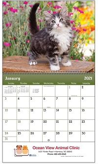 Puppies and Kittens 2021 Calendar